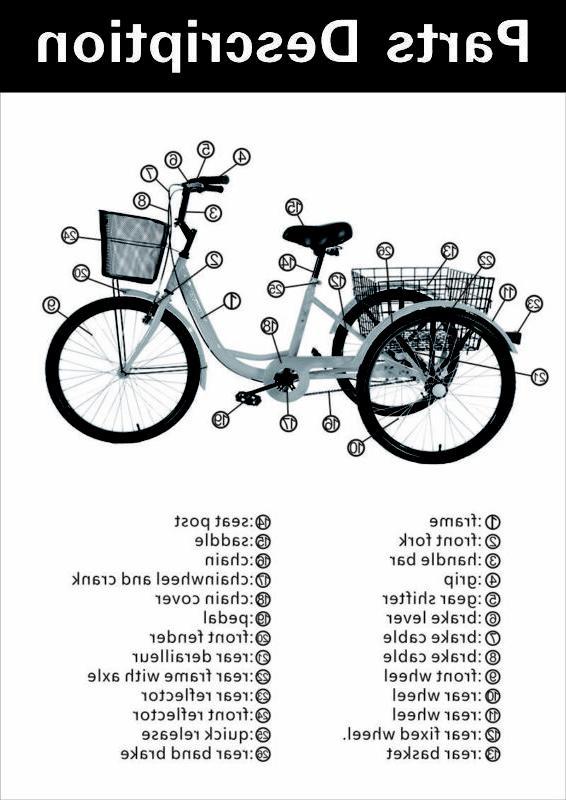 3-Wheel 7-Speed Bike Cruise Basket+Free